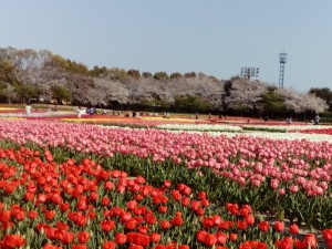 愛知県名古屋市電話工事